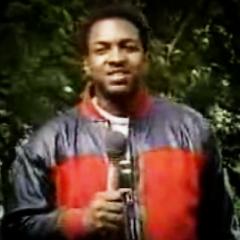 Ralph Mcdaniels - Video Music Box
