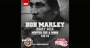 DJ Mister Cee - Bob Marley Tribute Mix