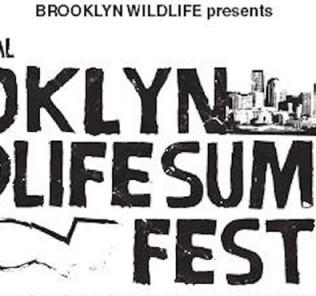 Brooklyn Wildlife Summer Festival